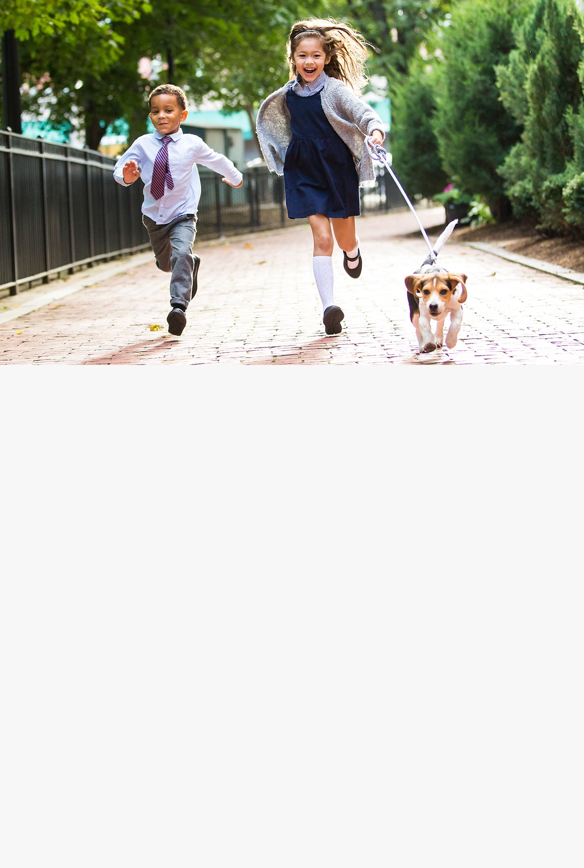 A boy, a girl and a dog are running.